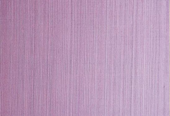 天津特斯意(织布纹理)-艺术涂料